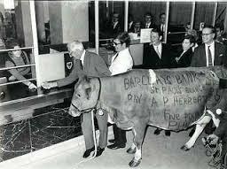 Pappal Bull