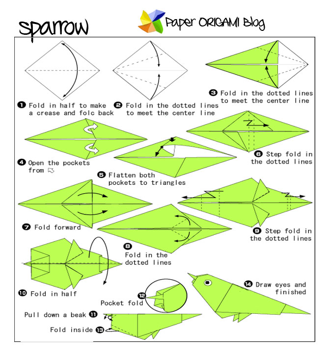 Download Photos HERE Sparrow Origami