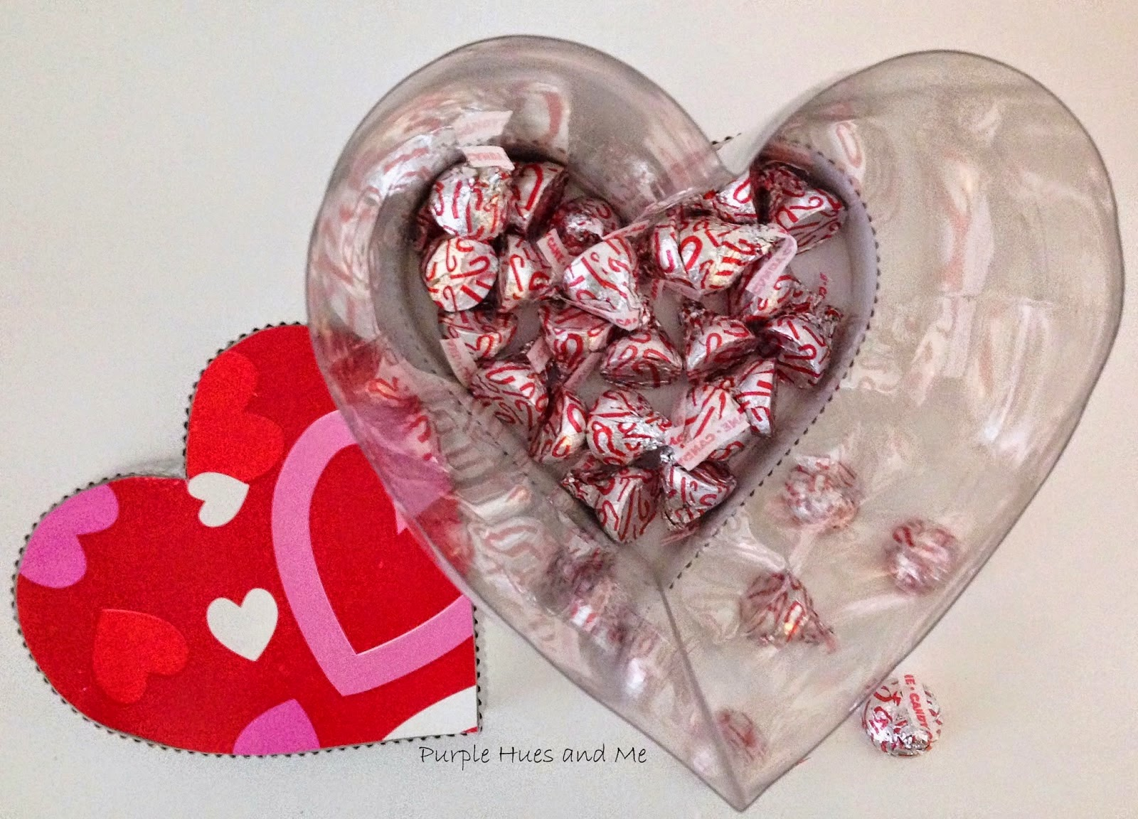 http://plumperfectandme.blogspot.com/2015/01/recycled-soda-bottle-heart-shaped-see.html