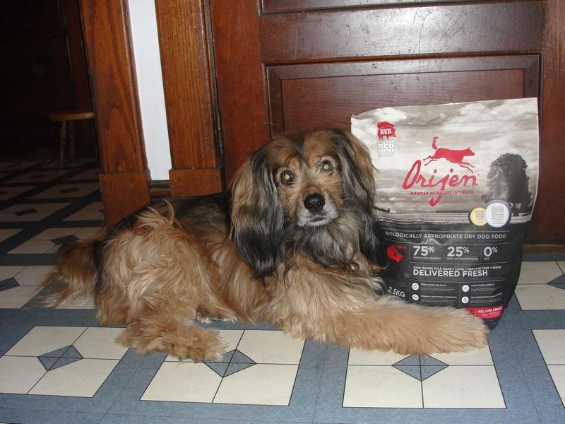 Orijen Dog Food Distributor