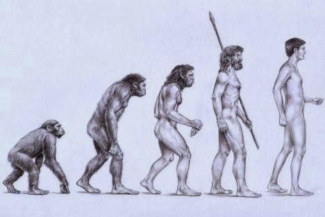 evolution and the social mind   Center for Evolutionary Psychology