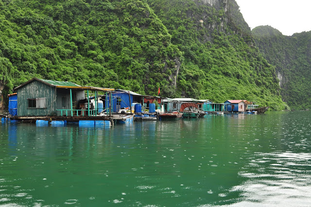 wisata, Ha Long Bay, Hanoi,Vietnam, desa nelayan Cua Van fishing village