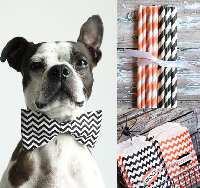 chevron halloween, cute dog bow tie, halloween decor, diy
