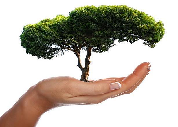 Menanam dan memelihara pohon untuk kesejanteraan