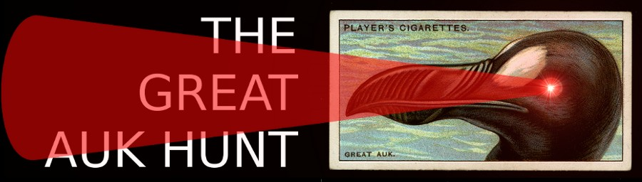The Great Auk Hunt