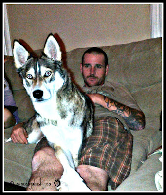 My brother and my husky - best buds