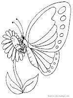 Butterfly And Sun Flower Coloring Pages Realistic