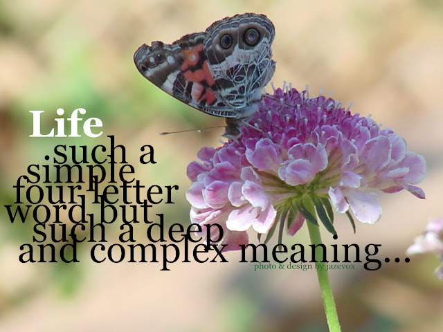 A macro photograph of a beautiful pink flower with colorful butterfly polinating it