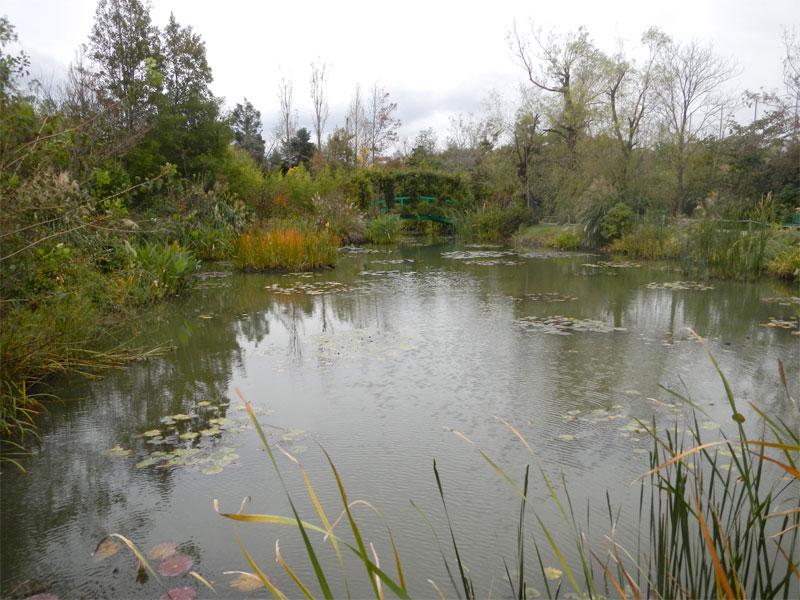 クロード・モネの睡蓮の池。 ありがとうモネ、ありがとうセンセイ。