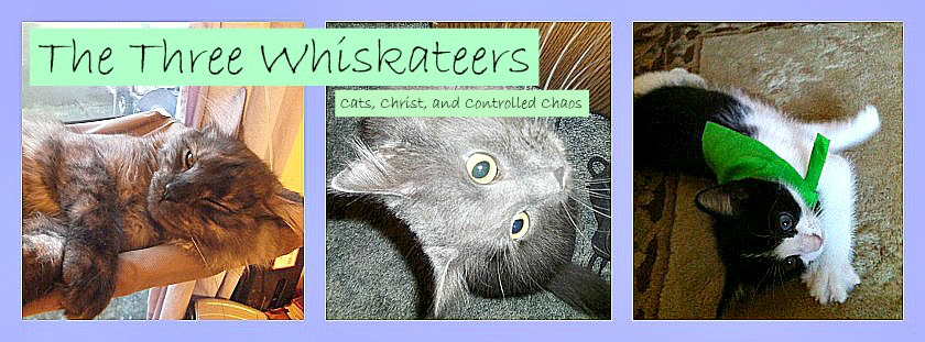 The Three Whiskateers