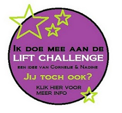 Leuke uitdagingen