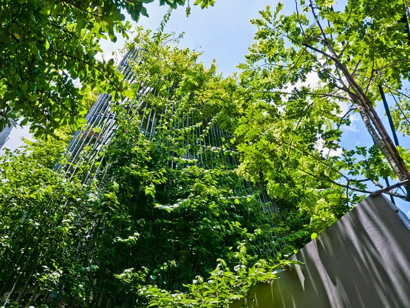 konsep-green fall-unsur-alami-segar-dan-asri-pada-desain-fasad-rumah-ruang dan rumahku-003