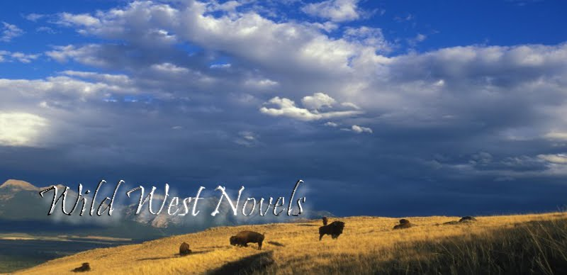 Wild West Novels