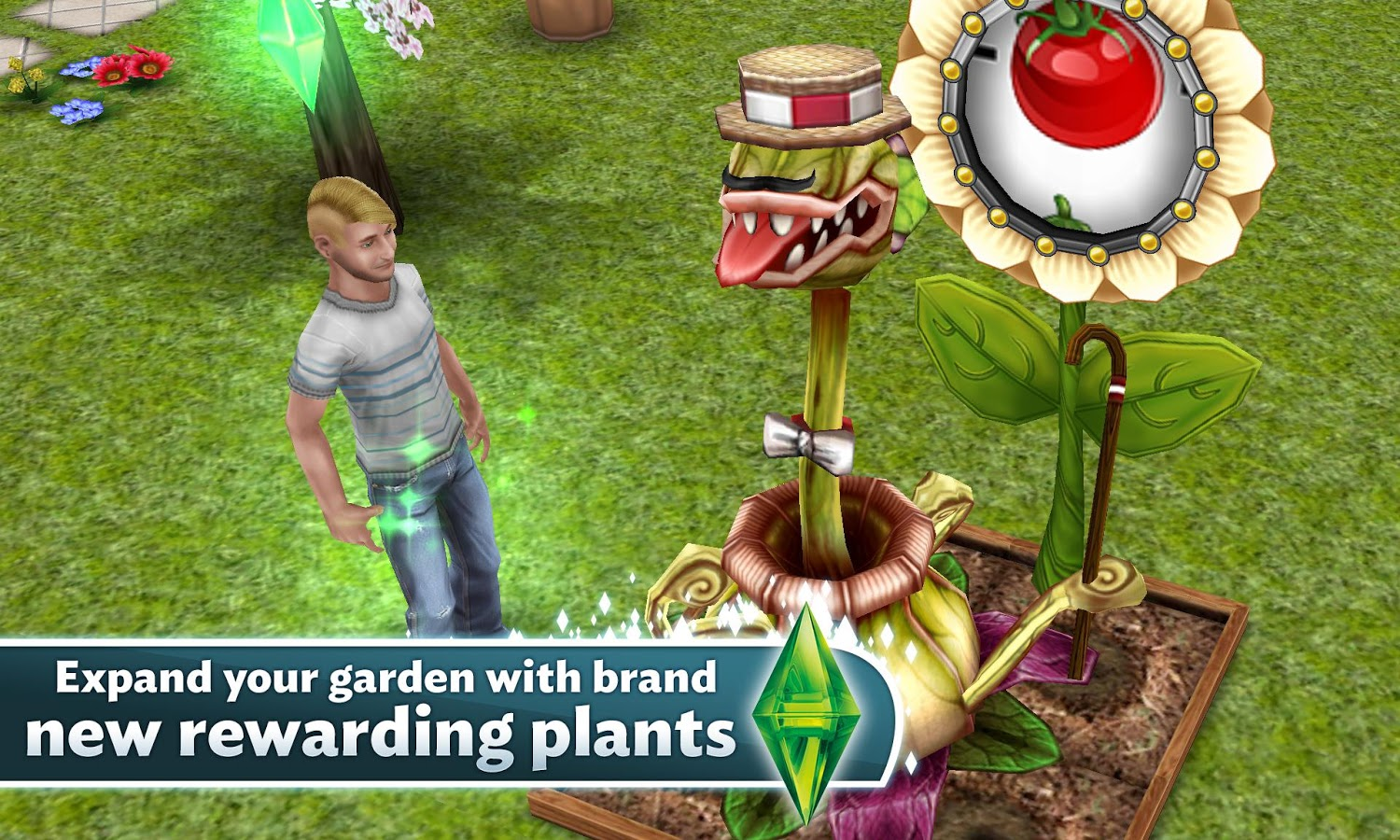 Free money on sims 3 freeplay