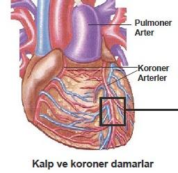 Gizli kalp hastalığı tedavisi