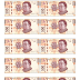 Billetes didácticos para imprimir