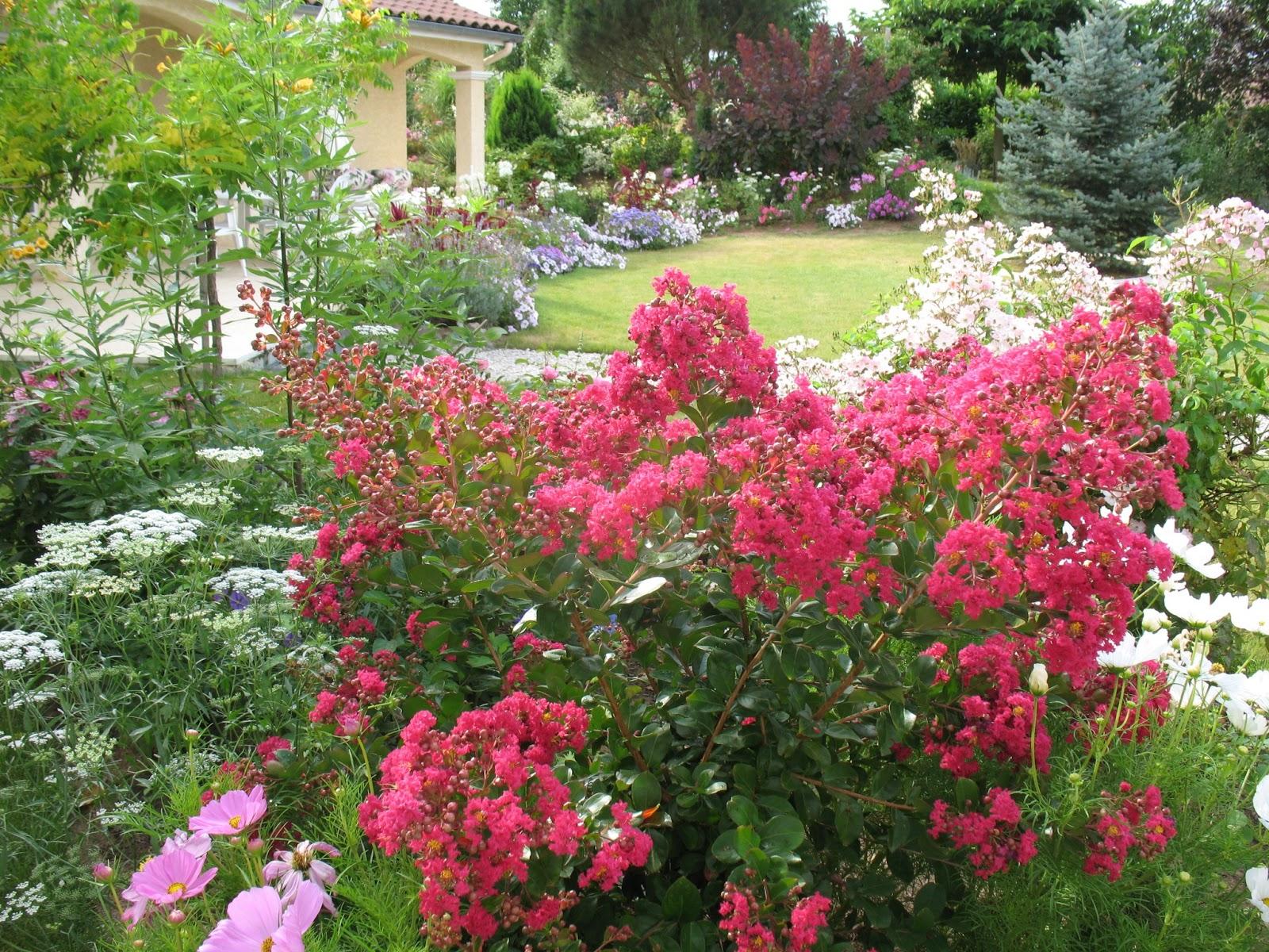 Roses du jardin ch neland le jardin en ao t for Vasques pour fleurs jardin