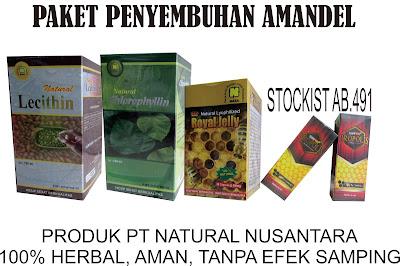 http://www.stockistnasajogja.com/2015/12/paket-penyembuhan-amandel.html