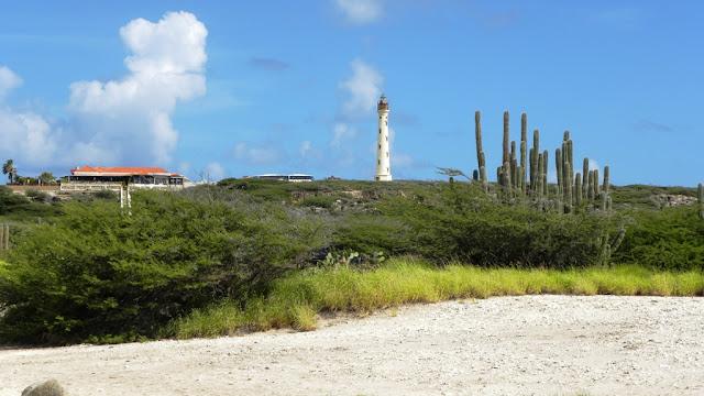 Arachi Beach Aruba