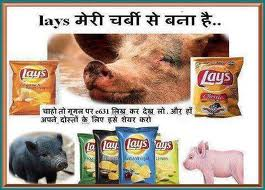E631-PIG Fat in Food Products