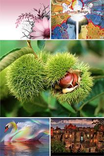 Коллекция разных красивых новых картинок на рабочий стол
