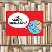 VI. Deschideri francofone