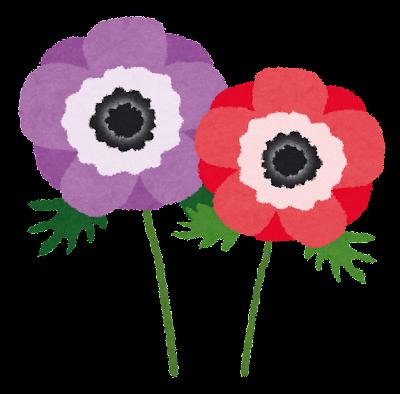 アネモネのイラスト(花)