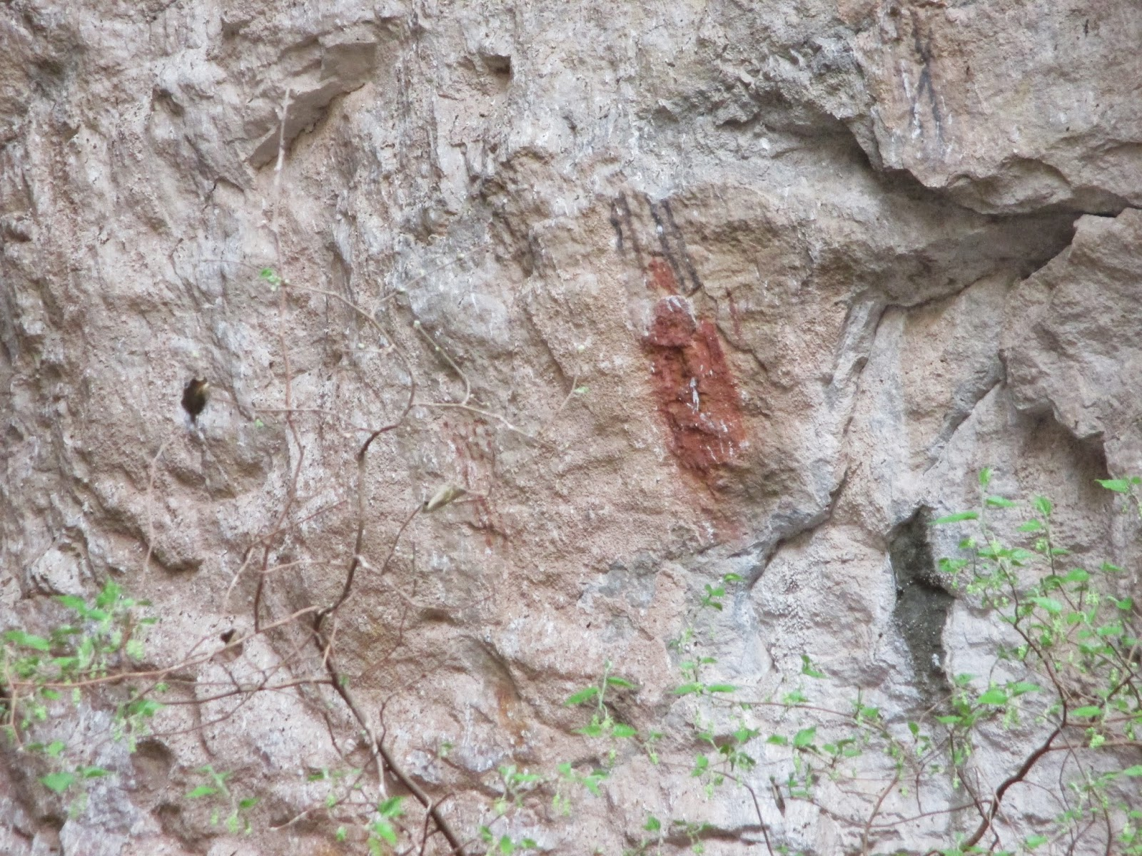 pictographs outside the cave entrance at carlsbad