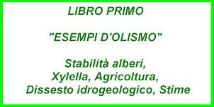 Progetto Editoriale (3 libri)