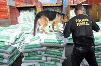 Cão policial fica viciado em cocaína