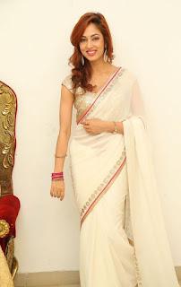 Actress Vidisha Srivastava Latest Pictures in Saree at Harinath Wedding Reception  13.jpg