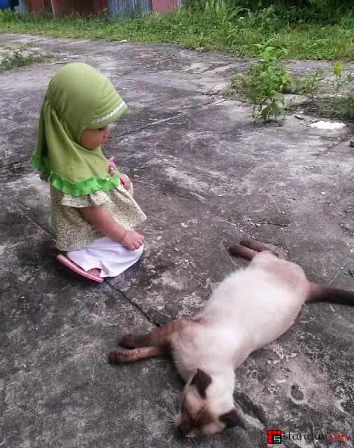 """Kelahiran si Pupus, Kucing """"Persia"""" yang Kesasar-4"""