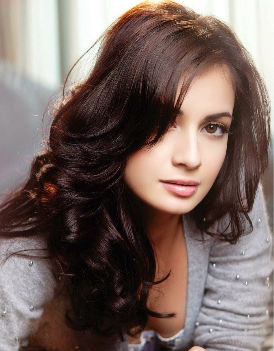 Dia Mirza Latest HD Wallpapers Collection 2014