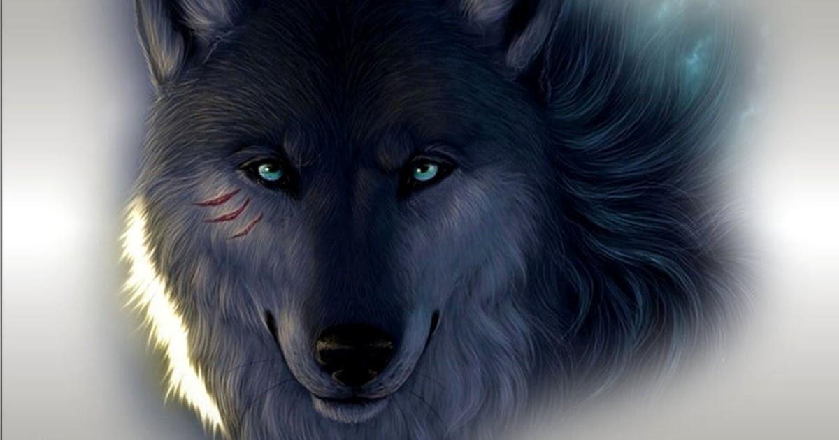 Gambar Serigala Keren di Alam Liar
