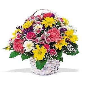 Send Colorful Get Well Flowers