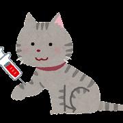 ペットの採血のイラスト(猫)