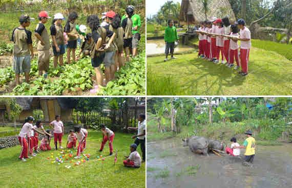 Aktivitas liburan di villa Desa Sawah