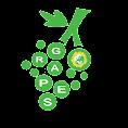 Δiκτυο GR.A.P.E.S