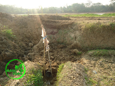 "FOTO : Gorong - gorong dari pipa 8"" hasil udunan petani. Sisi arah ke sawah."