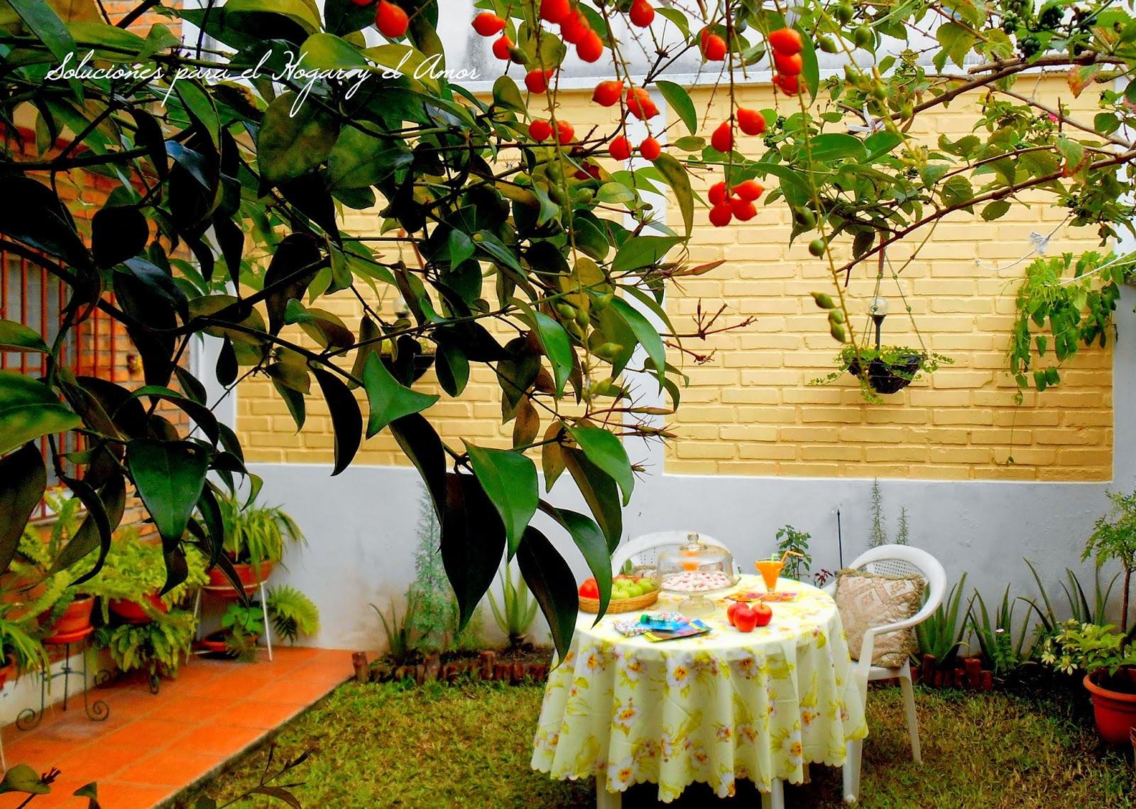 ambiente en el jardín, sillas y mesa de jardín,