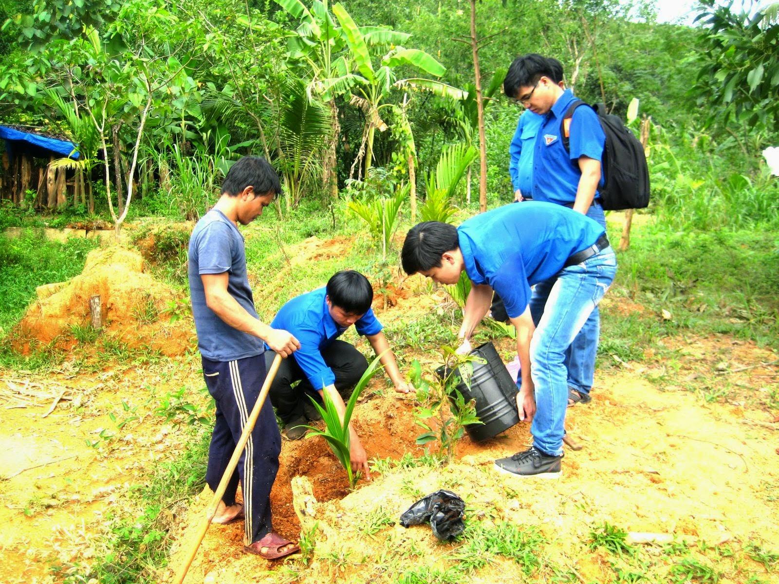 Đoàn Khối các cơ quan tỉnh tổ chức hoạt động tình nguyện tại huyện An Lão