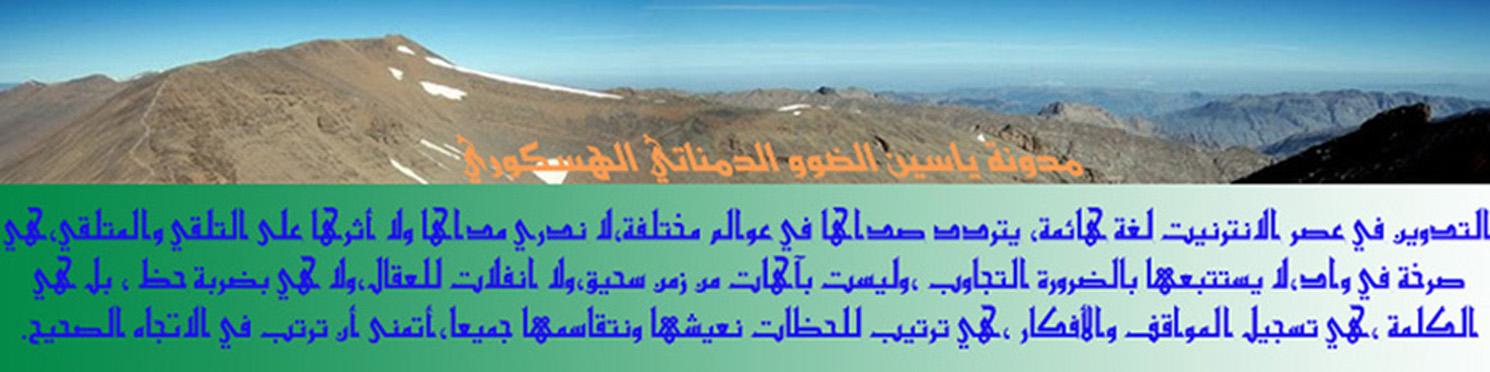 مدونة ياسين الضوو الدمناتي