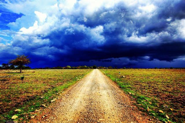 foto jalur sepanjang TN. baluran jawa timur