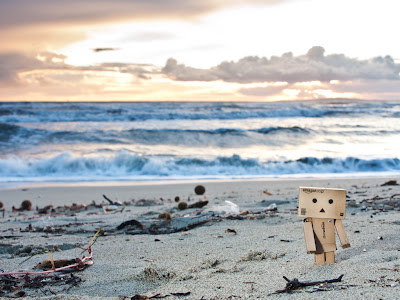 Danbo Sea Side
