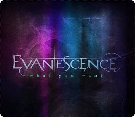 Evanescence What You Want Single Descargar