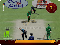 EA Cricket 2013 Screenshot 24