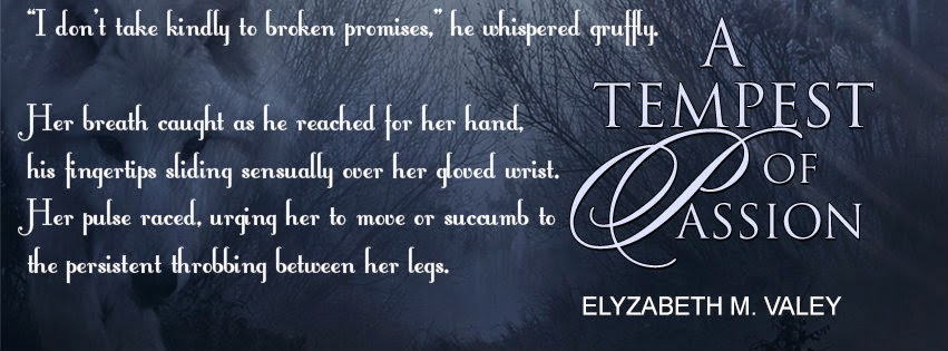 http://www.evernightpublishing.com/a-tempest-of-passion-by-elyzabeth-m-valey/