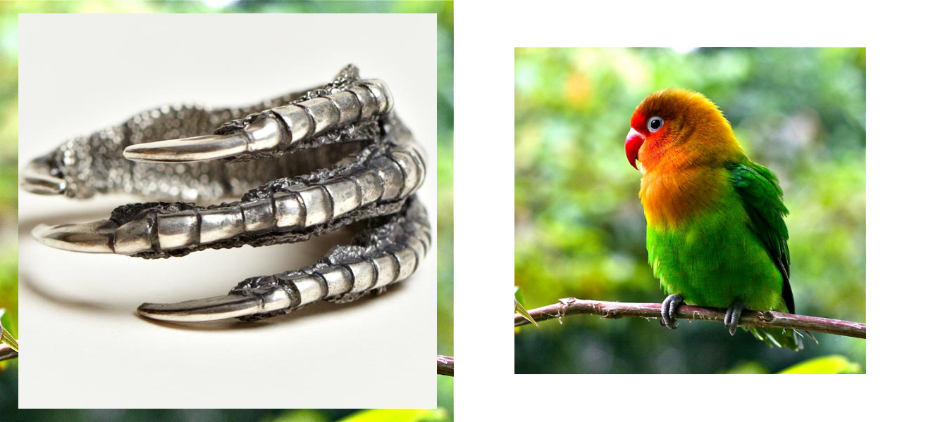 Ann Demeulemeester bird claw ring with love bird