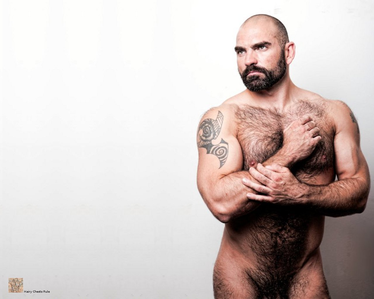HairyChestsRuleYourDesktop: 0021-0030wallpapers of men with hairy ...