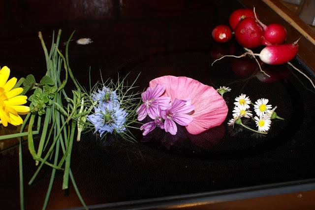 Blumen im Salat bunt wie der Regenbogen